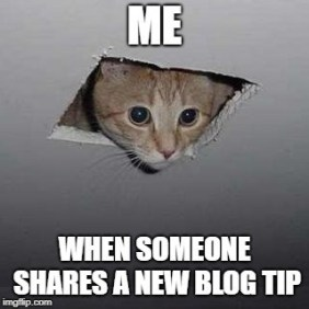 Blog-Memes-New-Blog-Tips