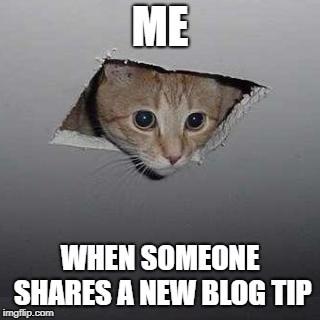 Blog-Memes-New-Blog-Tips