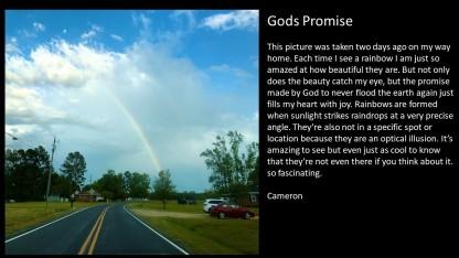 Cameron Photo Contest