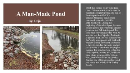 deja man made pond