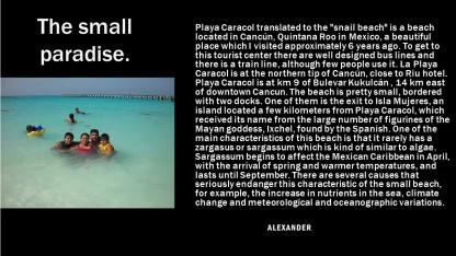 alexander small paradise
